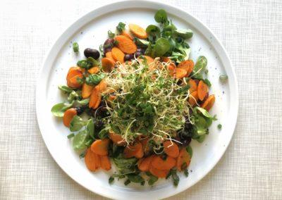 Scharfe Karotte mit Käferbohnen-Sprossen-Salat